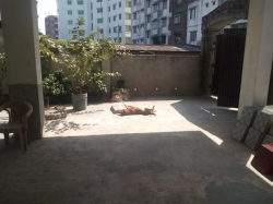 1500 sqft flat for sell